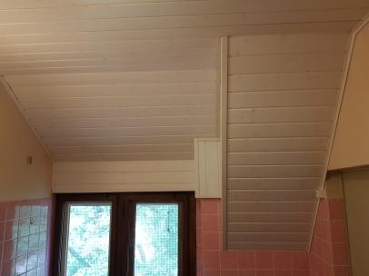 Rénovation d'un plafond